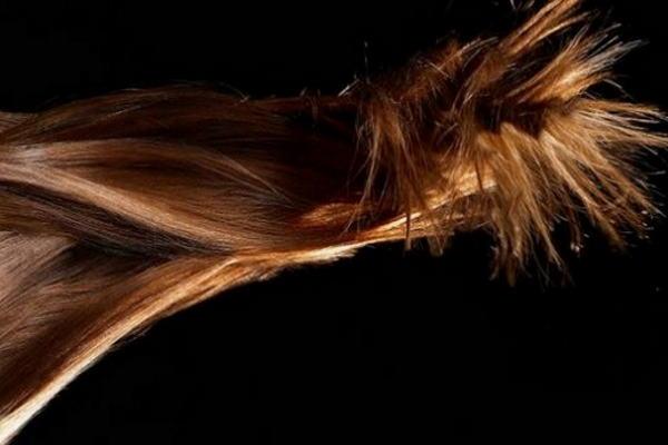 4 stvari o ispadanju kose koje morate znati
